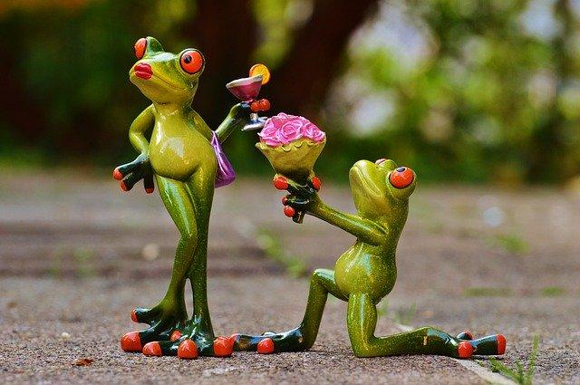 غرائب وطرائف الزواج